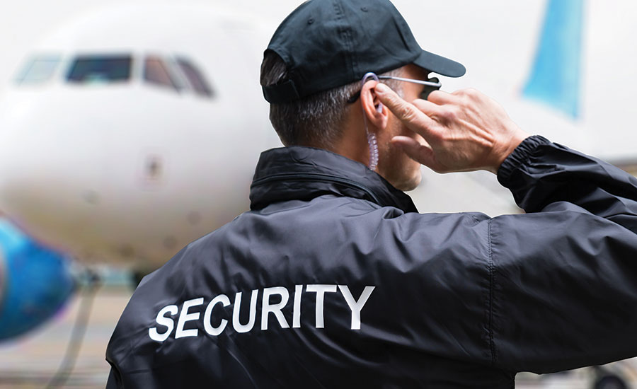Why You Need To Travel Security Services?