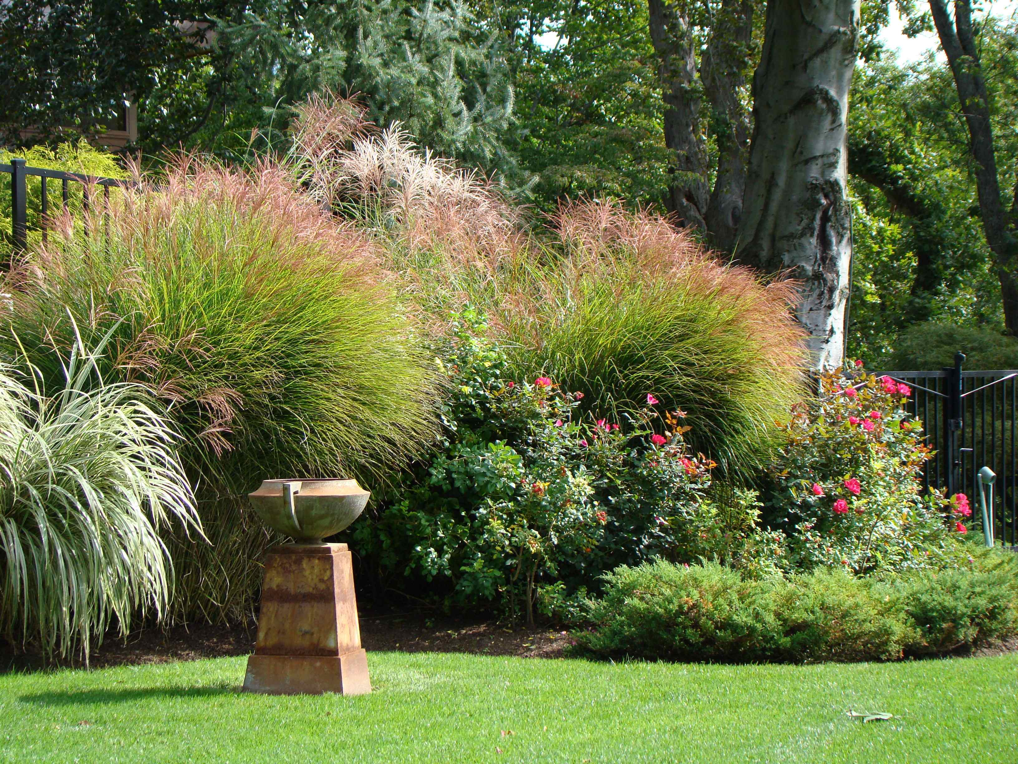 Follow These Tips and Tricks While Looking For Landscaping Companies