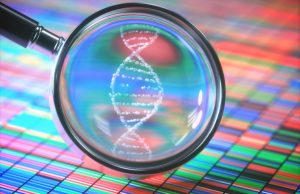 What Are The Differences Between DNA Genotyping And Sequencing?